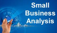 "Small Business Analysis: ""Does size matter?"""