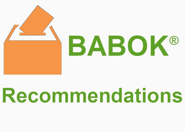 BABOK Recommendations