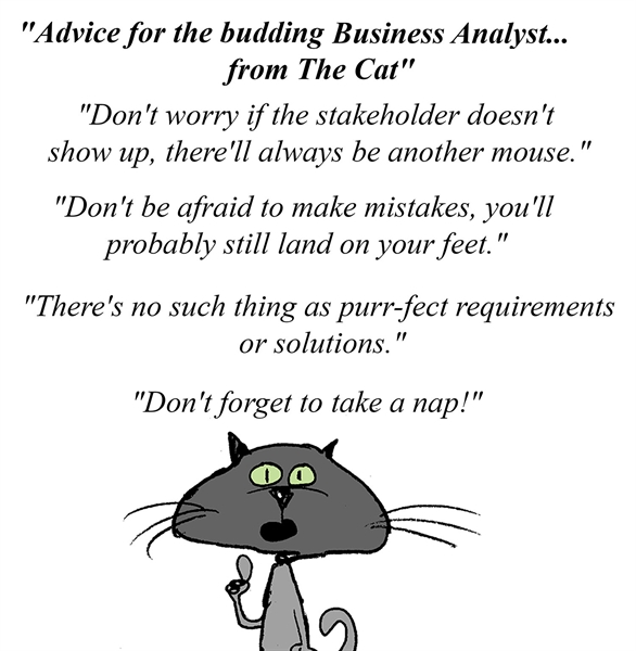 Advice for the budding Business Analyst... from The Cat