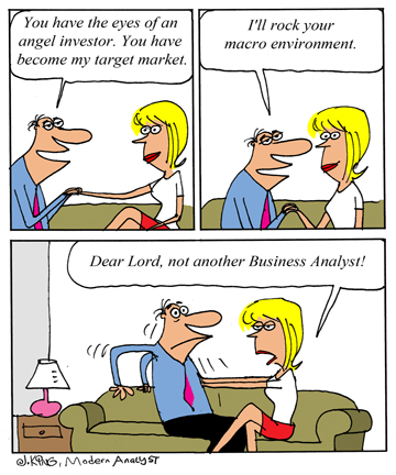 Humor - Cartoon: Business Analyst