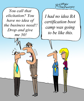 Humor - Cartoon: Business Analyst Certification Boot Camp