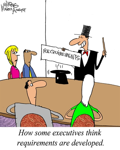 Executive Perspective: Requirements Development