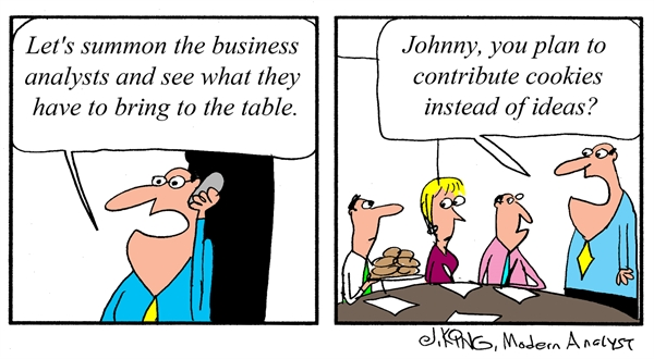 What do Business Analysts bring to the table?