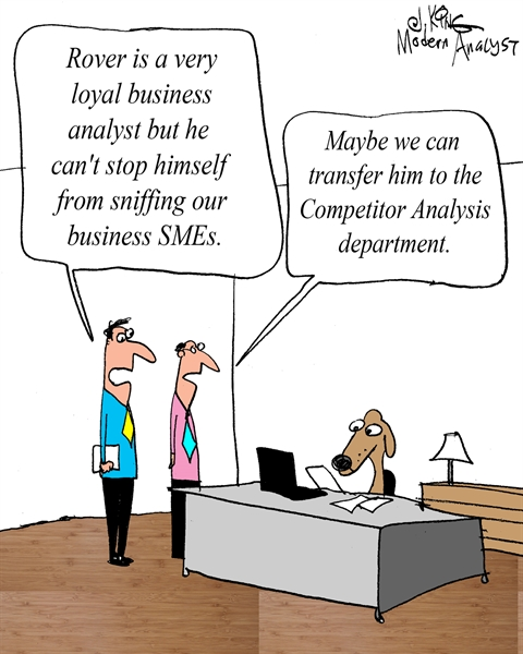 Loyal Business Analyst
