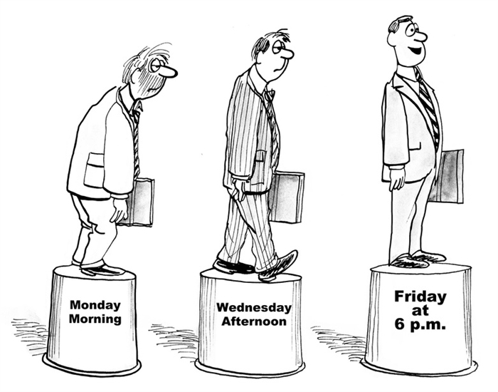 Humor: A Week in the Life of a Business Analyst