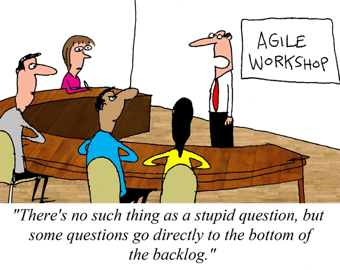 Humor - Cartoon: Asking Questions in an Agile Workshop