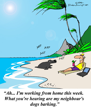 Humor - Cartoon: The Telecommuting Business Analyst # 1