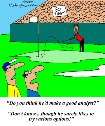 Humor - Cartoon: What makes a good business analyst?
