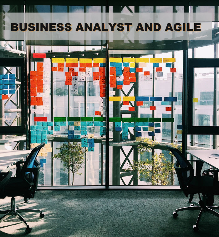 Business Analyst and Agile
